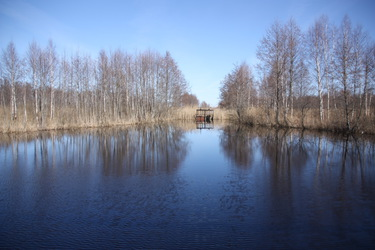 "019 fill 375x250 - Водный маршрут ""Река Цна-Припять"""