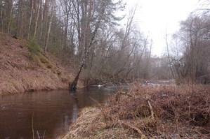 "DSC 0021 03 fill 299x199 - Водный маршрут ""Река Черница"""