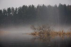 "DSC 0110 03 fill 301x200 - Водный маршрут ""Река Черница"""