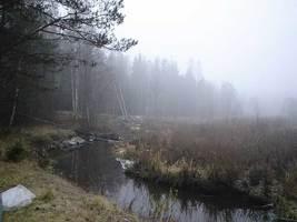 "moza003 fill 267x200 - Водный маршрут ""Река Можа - Бобр - Березина"""