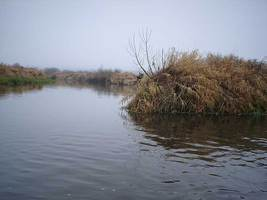 "moza009 fill 267x200 - Водный маршрут ""Река Можа - Бобр - Березина"""