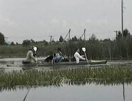 """sch032 fill 261x200 - Водный маршрут """"Река Щара"""""""