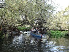 "ush004 fill 267x200 - Водный маршрут ""Река Уша-Березина"""